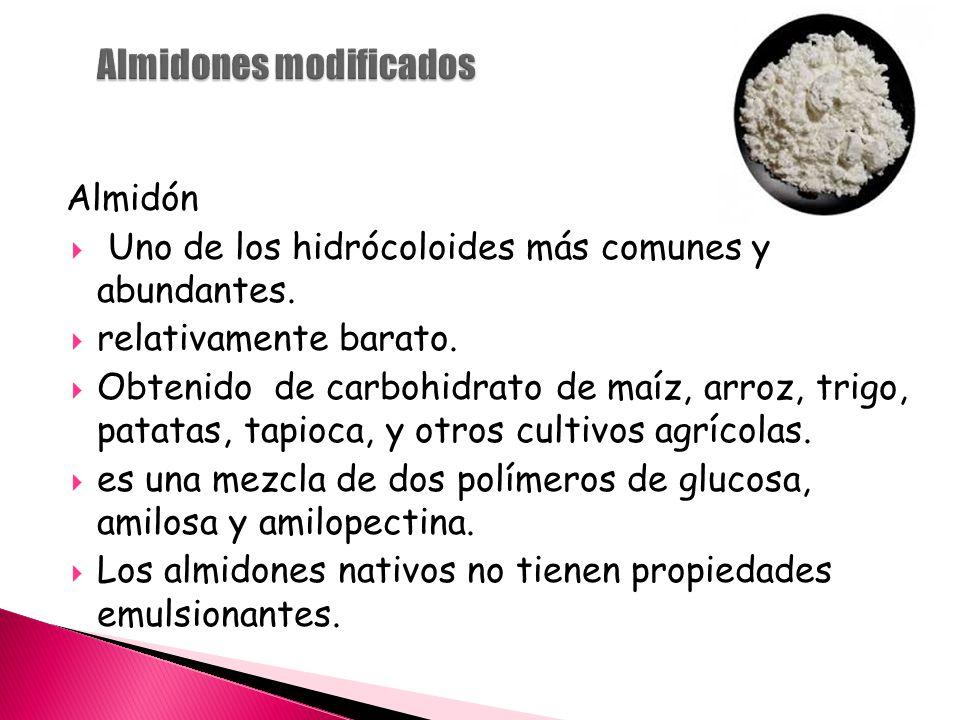 Almidón  Uno de los hidrócoloides más comunes y abundantes.