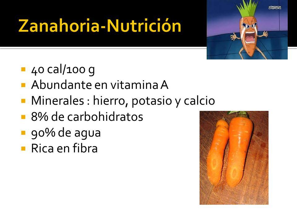  40 cal/100 g  Abundante en vitamina A  Minerales : hierro, potasio y calcio  8% de carbohidratos  90% de agua  Rica en fibra