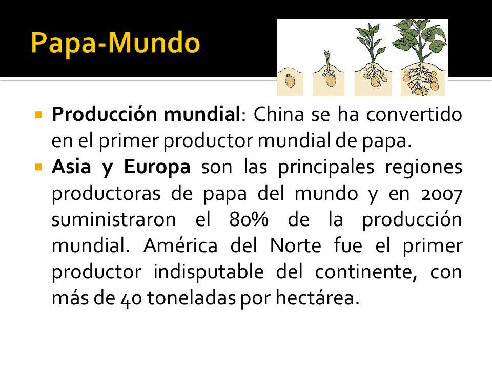  Producción mundial: China se ha convertido en el primer productor mundial de papa.