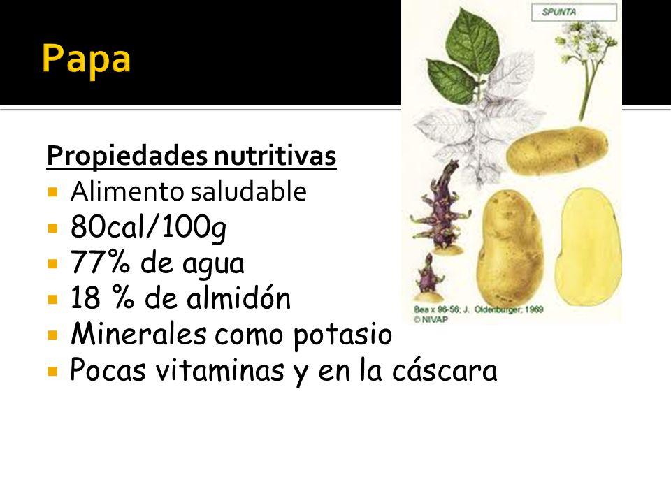 Propiedades nutritivas  Alimento saludable  80cal/100g  77% de agua  18 % de almidón  Minerales como potasio  Pocas vitaminas y en la cáscara