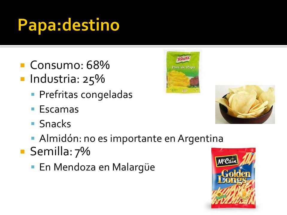  Consumo: 68%  Industria: 25%  Prefritas congeladas  Escamas  Snacks  Almidón: no es importante en Argentina  Semilla: 7%  En Mendoza en Malargüe