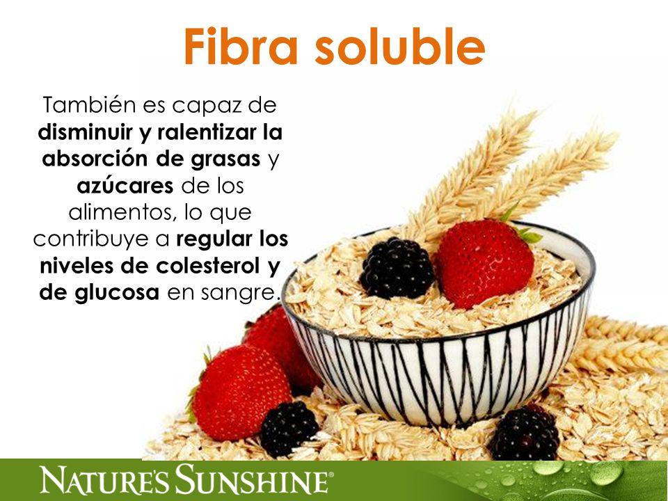 Fibra soluble También es capaz de disminuir y ralentizar la absorción de grasas y azúcares de los alimentos, lo que contribuye a regular los niveles de colesterol y de glucosa en sangre.