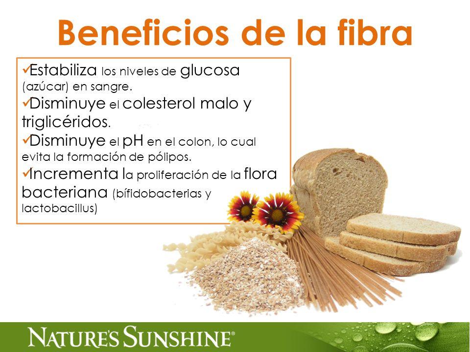 Beneficios de la fibra Estabiliza los niveles de glucosa (azúcar) en sangre.