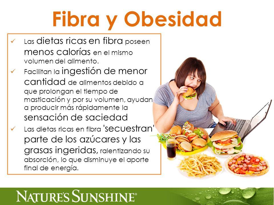 Fibra y Obesidad Las dietas ricas en fibra poseen menos calorías en el mismo volumen del alimento.