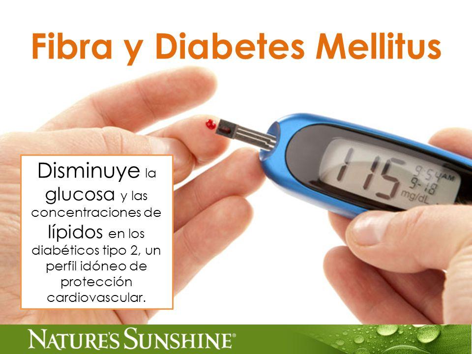 Fibra y Diabetes Mellitus Disminuye la glucosa y las concentraciones de lípidos en los diabéticos tipo 2, un perfil idóneo de protección cardiovascular.