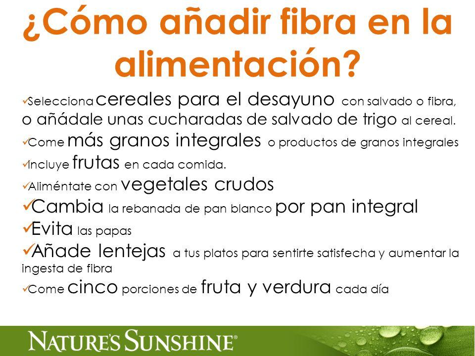 ¿Cómo añadir fibra en la alimentación.