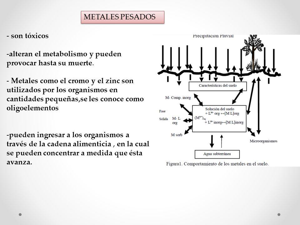 METALES PESADOS - son tóxicos -alteran el metabolismo y pueden provocar hasta su muerte.