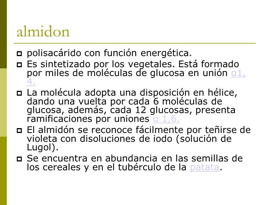 almidon  polisacárido con función energética.  Es sintetizado por los vegetales.