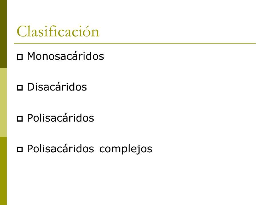 Clasificación  Monosacáridos  Disacáridos  Polisacáridos  Polisacáridos complejos