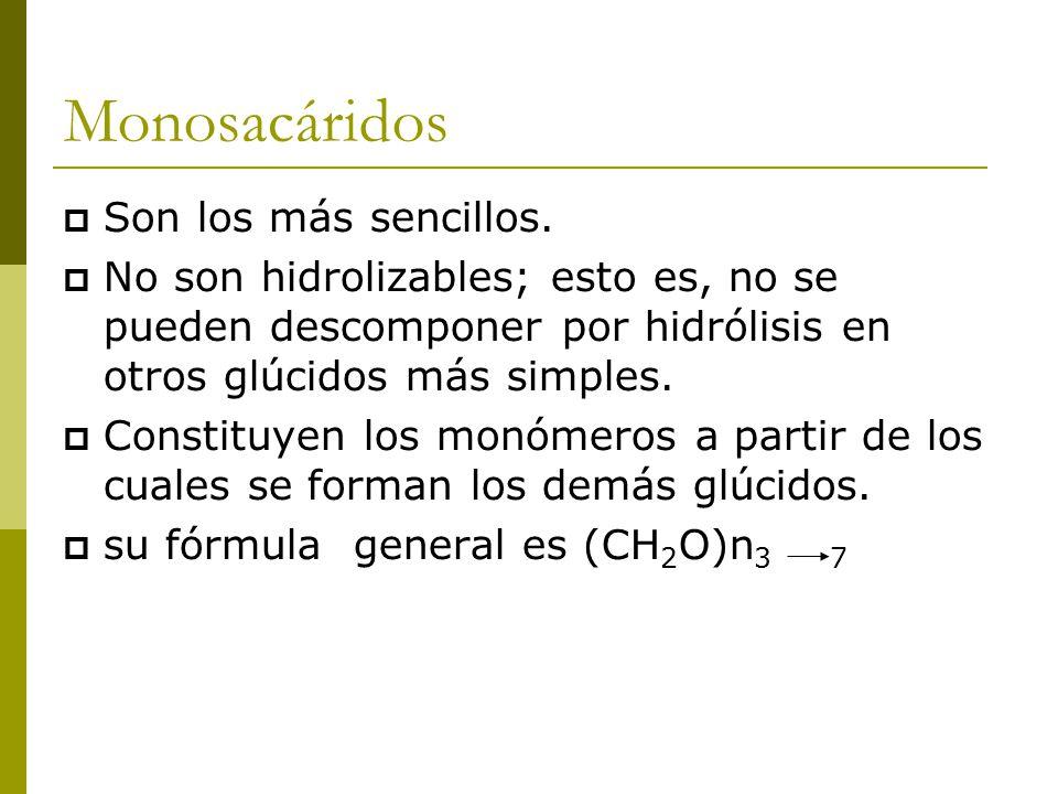 Monosacáridos  Son los más sencillos.