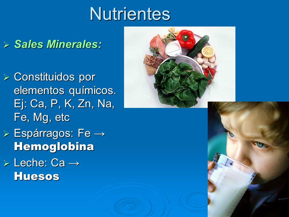 Nutrientes  Sales Minerales:  Constituidos por elementos químicos.