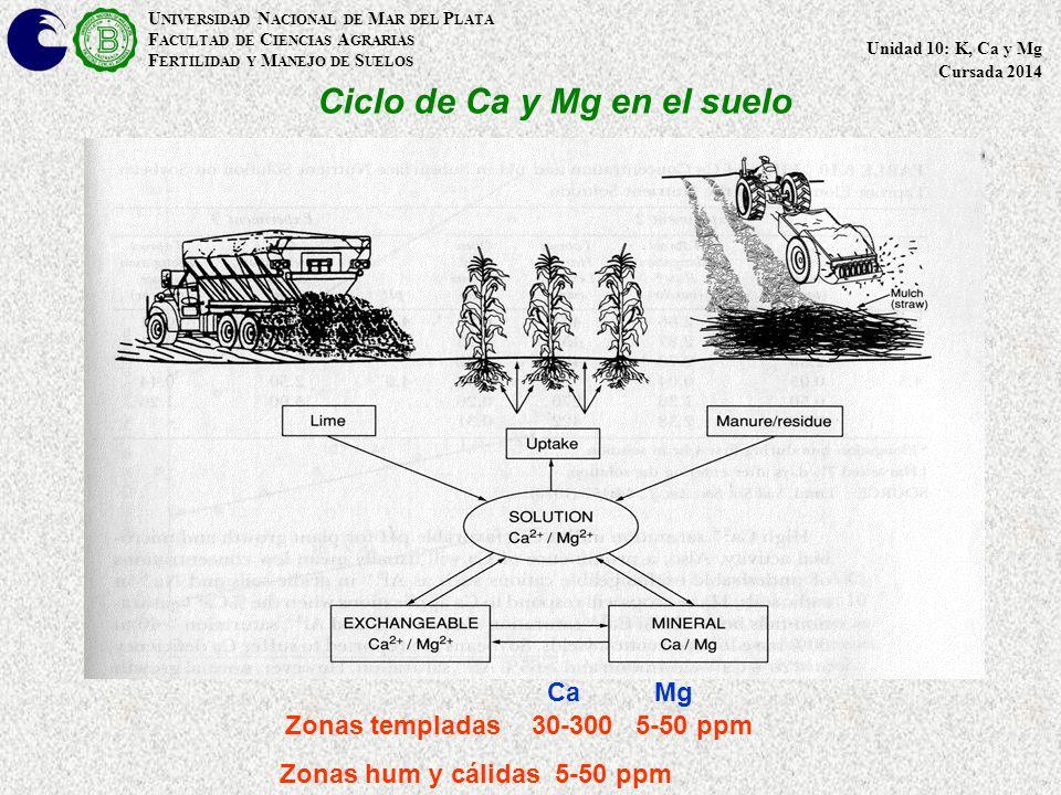 Ciclo de Ca y Mg en el suelo U NIVERSIDAD N ACIONAL DE M AR DEL P LATA F ACULTAD DE C IENCIAS A GRARIAS F ERTILIDAD Y M ANEJO DE S UELOS Unidad 10: K, Ca y Mg Cursada 2014 Zonas templadas 30-300 5-50 ppm Zonas hum y cálidas 5-50 ppm Ca Mg