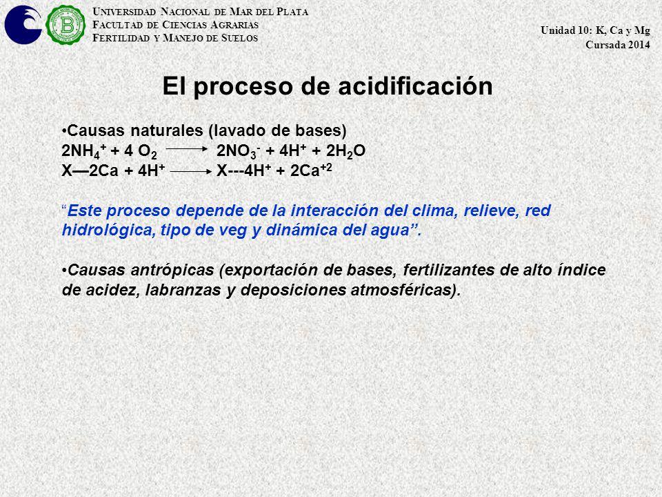 U NIVERSIDAD N ACIONAL DE M AR DEL P LATA F ACULTAD DE C IENCIAS A GRARIAS F ERTILIDAD Y M ANEJO DE S UELOS Unidad 10: K, Ca y Mg Cursada 2014 El proceso de acidificación Causas naturales (lavado de bases) 2NH 4 + + 4 O 2 2NO 3 - + 4H + + 2H 2 O X—2Ca + 4H + X---4H + + 2Ca +2 Este proceso depende de la interacción del clima, relieve, red hidrológica, tipo de veg y dinámica del agua .
