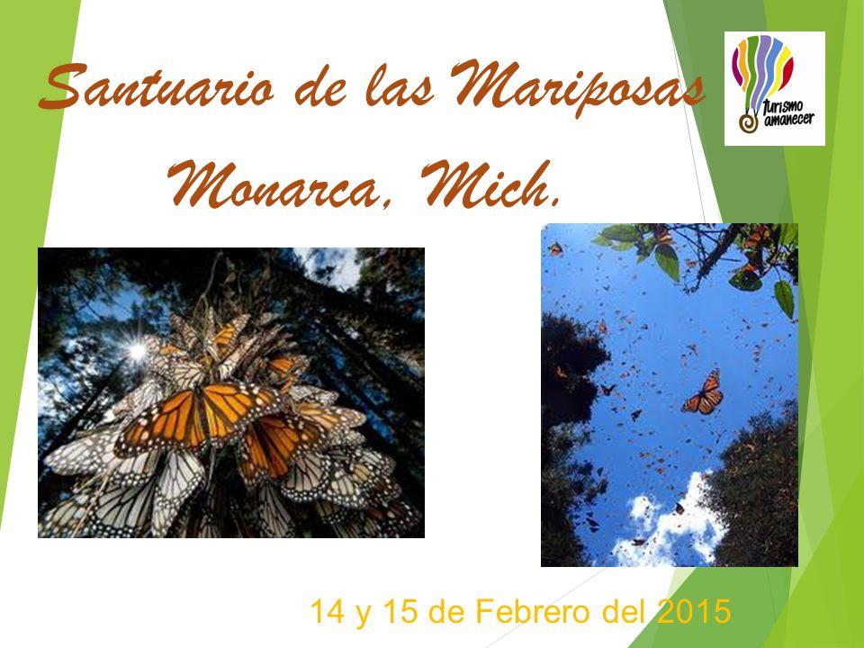 14 y 15 de Febrero del 2015 Santuario de las Mariposas Monarca, Mich.