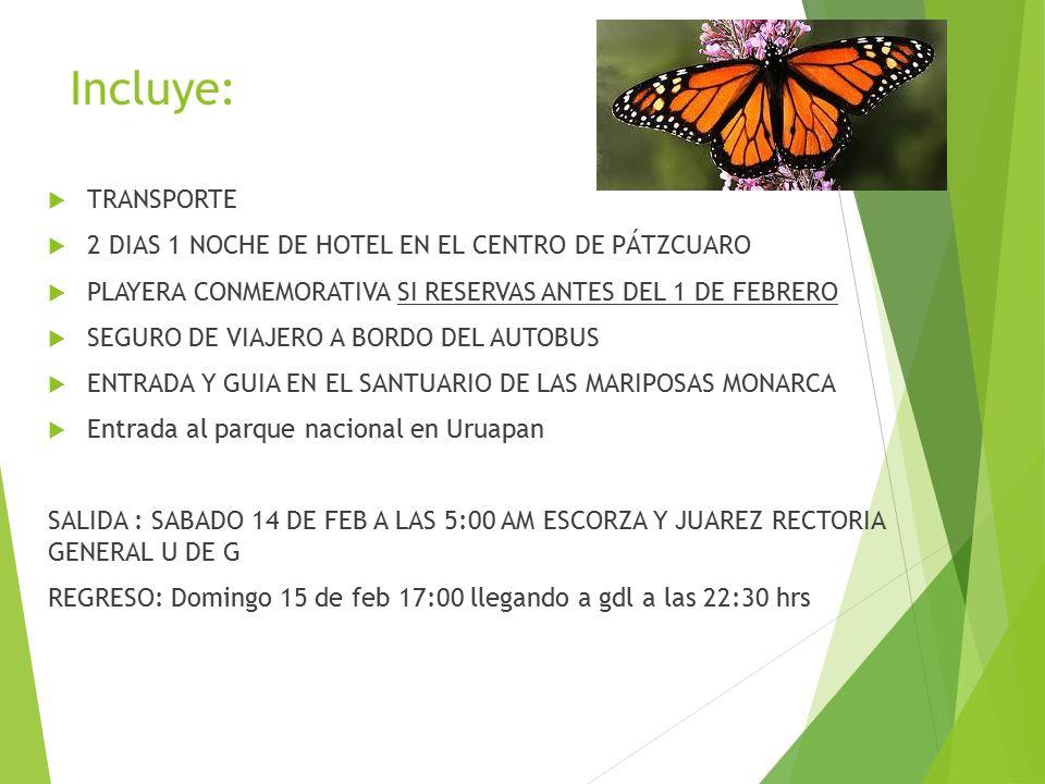 Incluye:  TRANSPORTE  2 DIAS 1 NOCHE DE HOTEL EN EL CENTRO DE PÁTZCUARO  PLAYERA CONMEMORATIVA SI RESERVAS ANTES DEL 1 DE FEBRERO  SEGURO DE VIAJERO A BORDO DEL AUTOBUS  ENTRADA Y GUIA EN EL SANTUARIO DE LAS MARIPOSAS MONARCA  Entrada al parque nacional en Uruapan SALIDA : SABADO 14 DE FEB A LAS 5:00 AM ESCORZA Y JUAREZ RECTORIA GENERAL U DE G REGRESO: Domingo 15 de feb 17:00 llegando a gdl a las 22:30 hrs