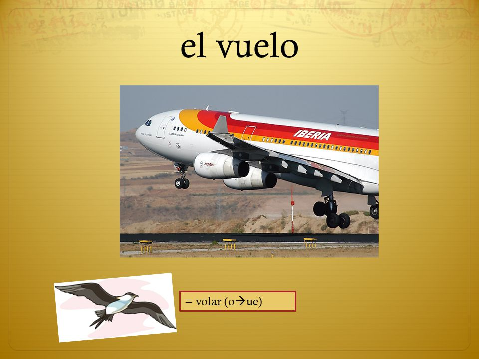 el vuelo = volar (o  ue)