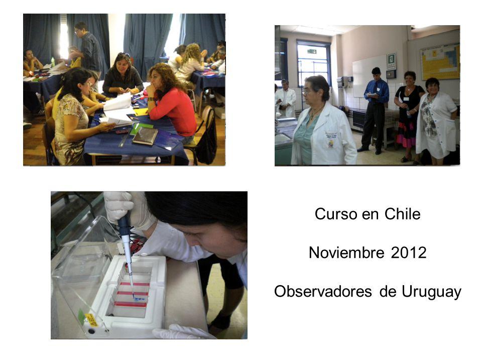 Curso en Chile Noviembre 2012 Observadores de Uruguay