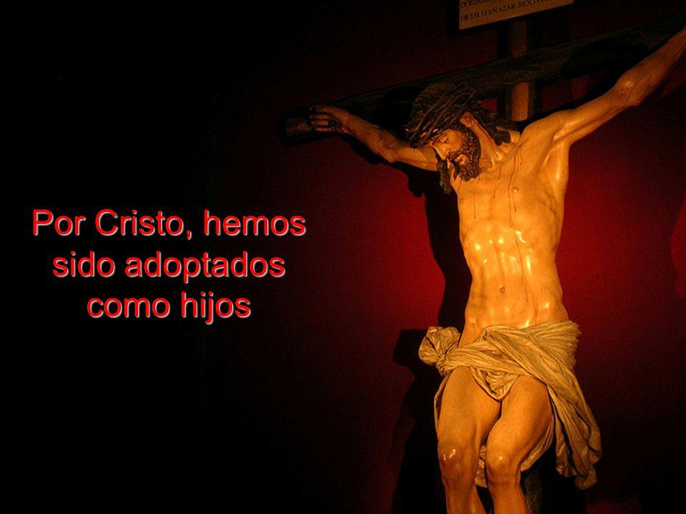 Han perdonado todos nuestros pecados y nos han escogido para ser santos.