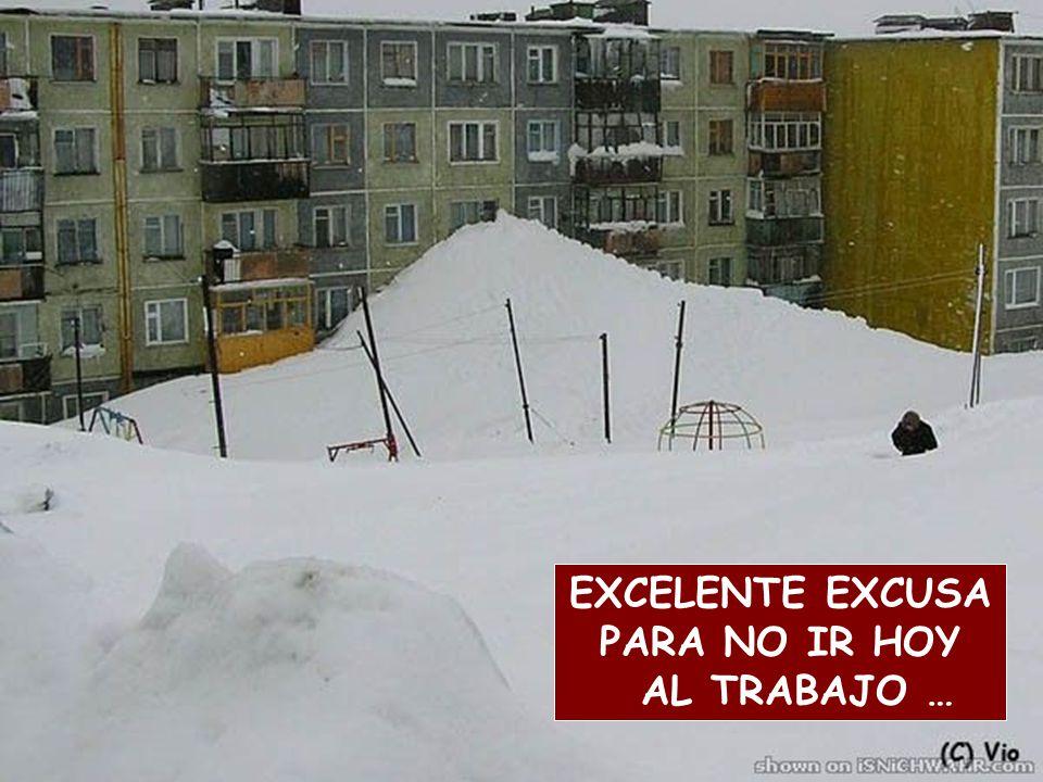 EXCELENTE EXCUSA PARA NO IR HOY AL TRABAJO …
