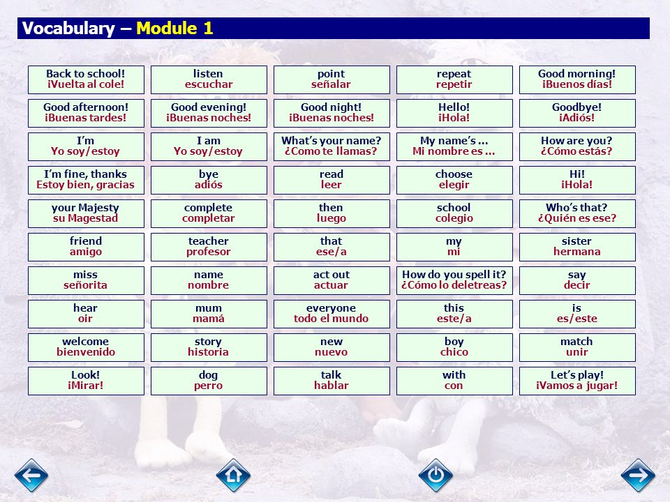 Vocabulary Module 1 Module 2