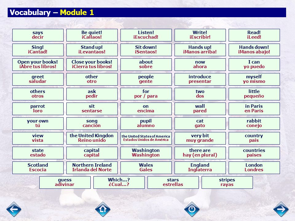 Vocabulary – Module 1 Back to school. ¡Vuelta al cole.