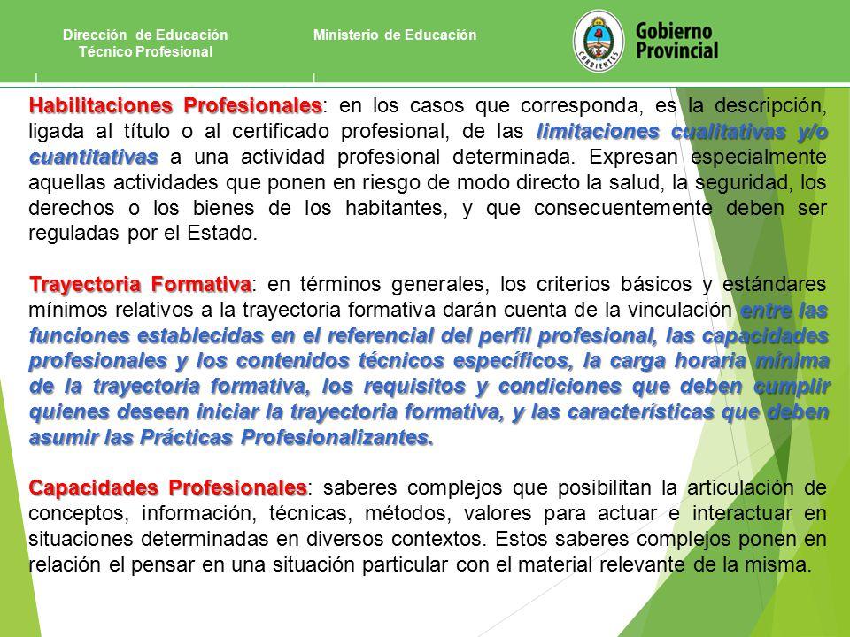 Ministerio de EducaciónDirección de Educación Técnico Profesional Habilitaciones Profesionales limitaciones cualitativas y/o cuantitativas Habilitaciones Profesionales: en los casos que corresponda, es la descripción, ligada al título o al certificado profesional, de las limitaciones cualitativas y/o cuantitativas a una actividad profesional determinada.