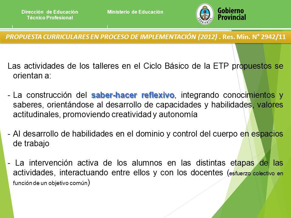 Ministerio de EducaciónDirección de Educación Técnico Profesional PROPUESTA CURRICULARES EN PROCESO DE IMPLEMENTACIÓN (2012).