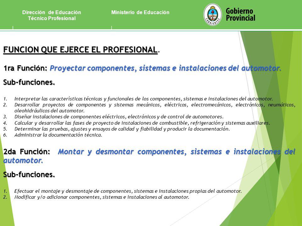 Ministerio de EducaciónDirección de Educación Técnico Profesional FUNCION QUE EJERCE EL PROFESIONAL FUNCION QUE EJERCE EL PROFESIONAL.
