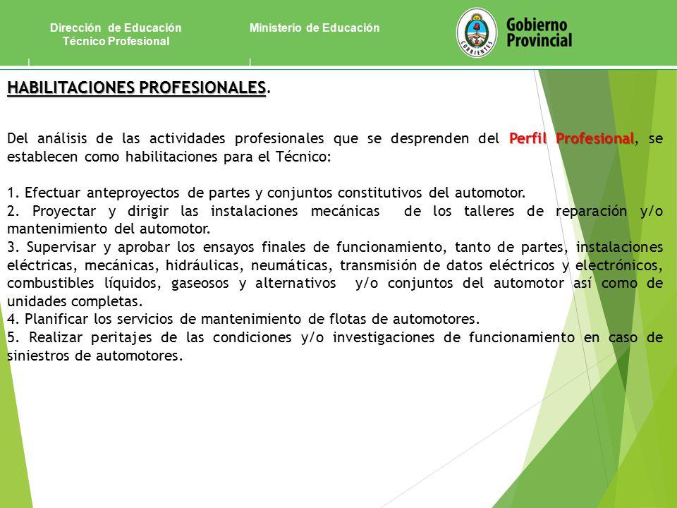 Ministerio de EducaciónDirección de Educación Técnico Profesional HABILITACIONES PROFESIONALES HABILITACIONES PROFESIONALES.