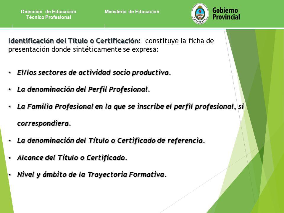 Ministerio de EducaciónDirección de Educación Técnico Profesional Identificación del Título o Certificación Identificación del Título o Certificación: constituye la ficha de presentación donde sintéticamente se expresa: El/los sectores de actividad socio productiva.