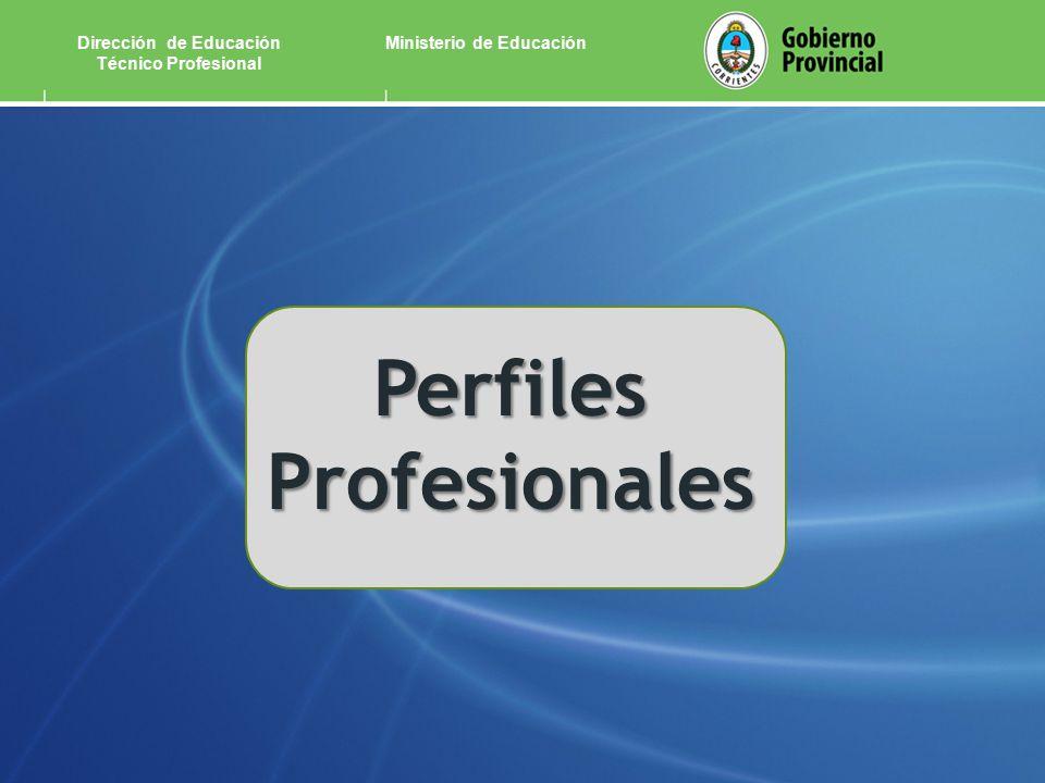 Ministerio de EducaciónDirección de Educación Técnico Profesional Perfiles Profesionales