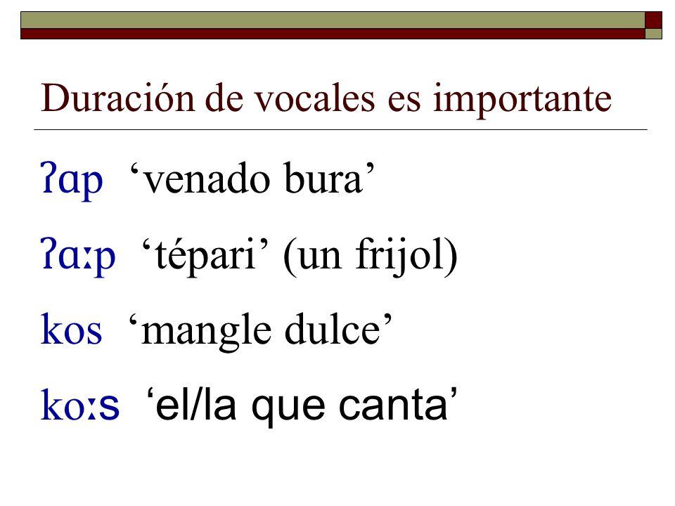 Duración de consonantes es importante  Pero sabemos que en varios casos es por la yuxtaposición de dos consonantes que son idénticas k - ɑː (tener) k - k ɑː (buscar)
