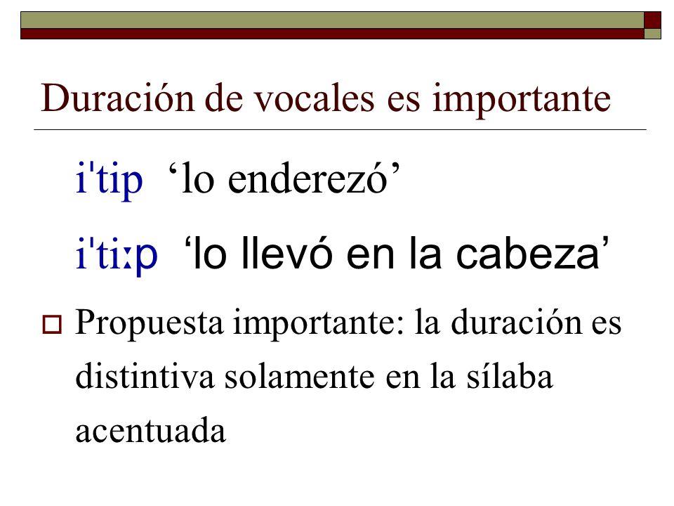 Duración de vocales es importante ʔɑ p 'venado bura' ʔɑː p 'tépari' (un frijol) kos 'mangle dulce' ko ː s 'el/la que canta'
