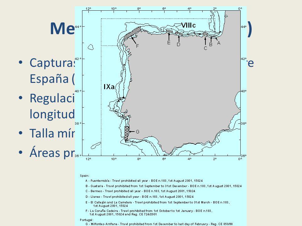 Medidas de gestión (2004) Capturas totales anuales repartidas entre España (2/3) y Portugal (1/3).