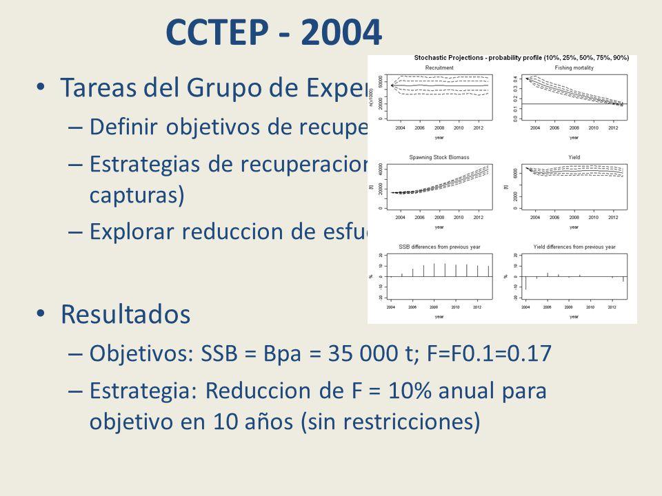 CCTEP - 2004 Tareas del Grupo de Expertos: – Definir objetivos de recuperacion: SSB y F – Estrategias de recuperacion (con restriciones de capturas) – Explorar reduccion de esfuerzo y medidas tecnicas Resultados – Objetivos: SSB = Bpa = 35 000 t; F=F0.1=0.17 – Estrategia: Reduccion de F = 10% anual para objetivo en 10 años (sin restricciones)