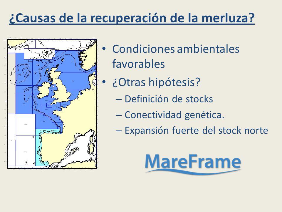 ¿Causas de la recuperación de la merluza. Condiciones ambientales favorables ¿Otras hipótesis.