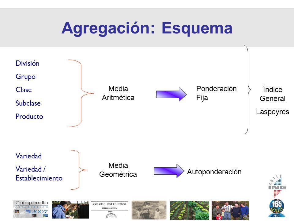 Agregación: Esquema Media Aritmética Media Geométrica División Grupo Clase Subclase Producto Variedad Variedad / Establecimiento Ponderación Fija Autoponderación Índice General Laspeyres