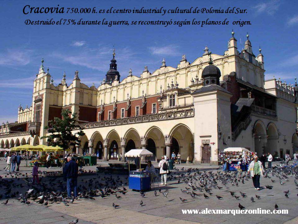¡La devoción de los polacos es muy grande.
