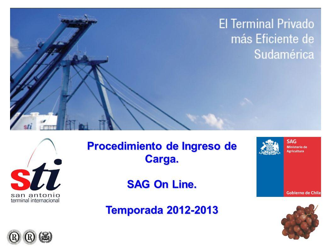 Procedimiento de Ingreso de Carga. SAG On Line. Temporada 2012-2013