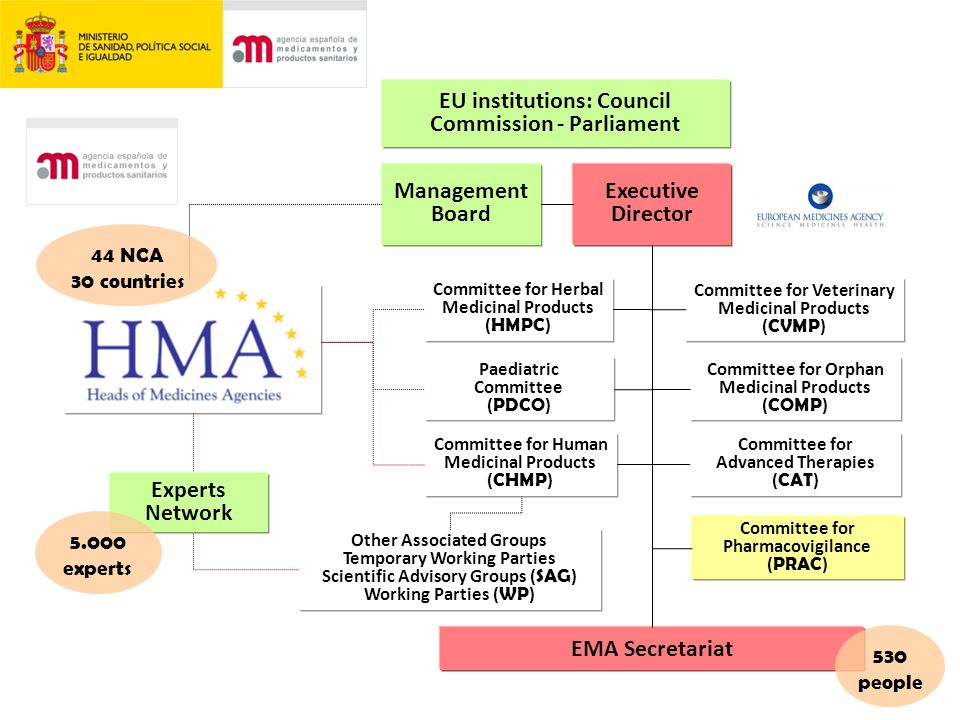 EMA Secretariat Management Board Executive Director Committee for Orphan Medicinal Products ( COMP ) Committee for Herbal Medicinal Products ( HMPC ) Committee for Veterinary Medicinal Products ( CVMP ) Committee for Human Medicinal Products ( CHMP ) Committee for Advanced Therapies ( CAT ) Paediatric Committee ( PDCO ) Other Associated Groups Temporary Working Parties Scientific Advisory Groups ( SAG ) Working Parties ( WP ) EU institutions: Council Commission - Parliament Experts Network Committee for Pharmacovigilance ( PRAC ) 44 NCA 30 countries 5.000 experts 530 people
