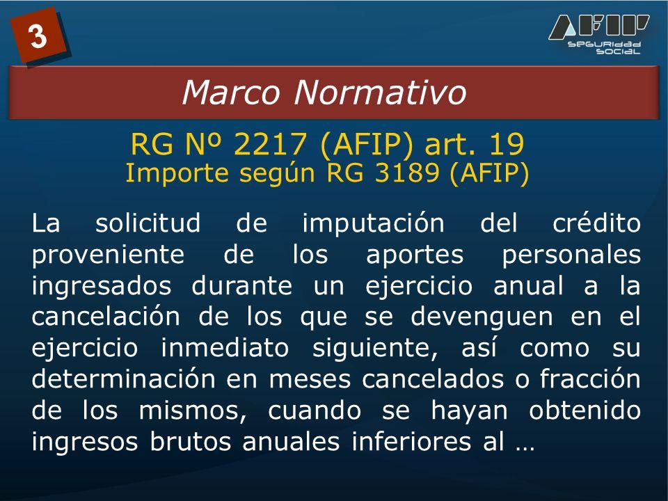 3 Marco Normativo RG Nº 2217 (AFIP) art.
