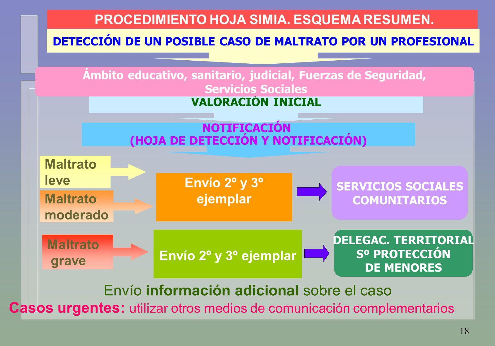 18 Maltrato leve Maltrato moderado Maltrato grave Envío información adicional sobre el caso DETECCIÓN DE UN POSIBLE CASO DE MALTRATO POR UN PROFESIONAL VALORACIÓN INICIAL NOTIFICACIÓN (HOJA DE DETECCIÓN Y NOTIFICACIÓN) Envío 2º y 3º ejemplar SERVICIOS SOCIALES COMUNITARIOS DELEGAC.