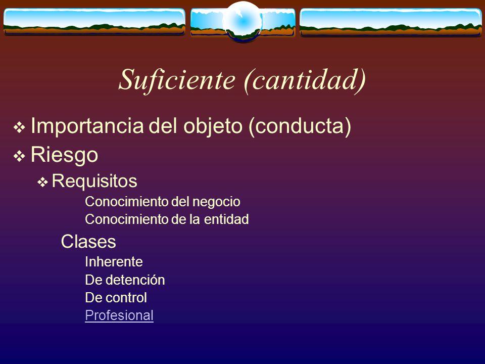 Suficiente (cantidad)  Importancia del objeto (conducta)  Riesgo  Requisitos Conocimiento del negocio Conocimiento de la entidad Clases Inherente De detención De control Profesional