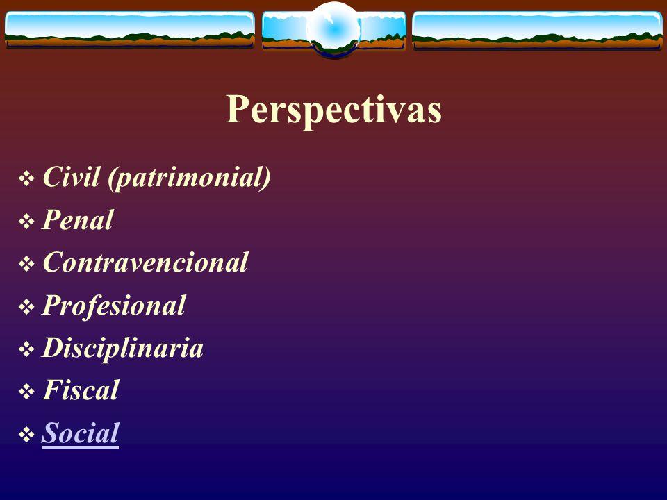 Perspectivas  Civil (patrimonial)  Penal  Contravencional  Profesional  Disciplinaria  Fiscal  Social Social