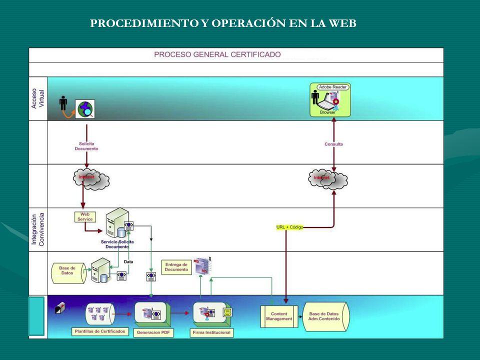 PROCEDIMIENTO Y OPERACIÓN EN LA WEB