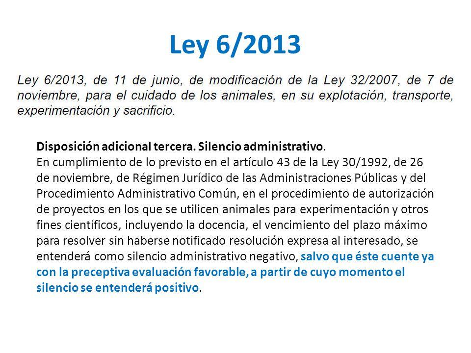 Ley 6/2013 Disposición adicional tercera. Silencio administrativo.