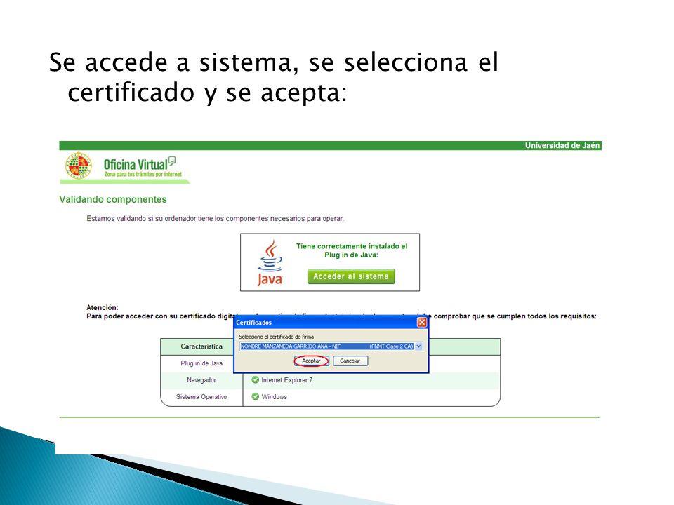 Se accede a sistema, se selecciona el certificado y se acepta: