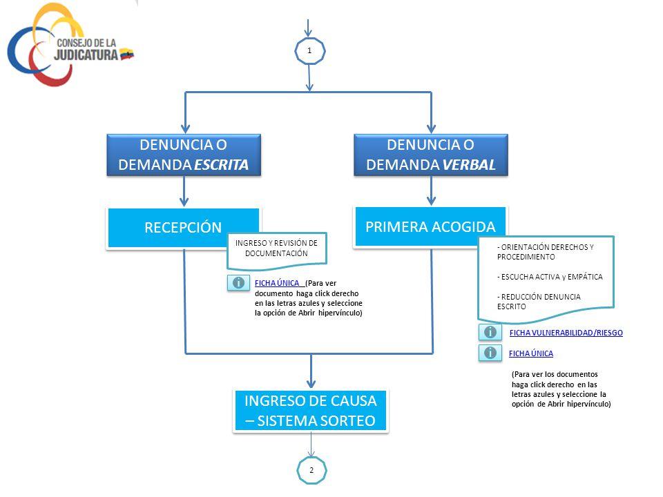 VÍCTIMA DE VIOLENCIA FLAGRANCIA UJVMF PROCEDIMIENTO CONTRAVENCIONAL PROCEDIMIENTO ESPECIAL DENUNCIA DEMANDA 1