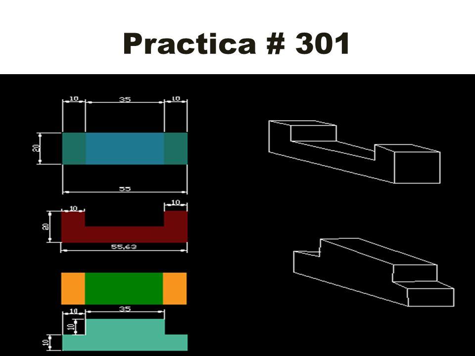 Practica # 301