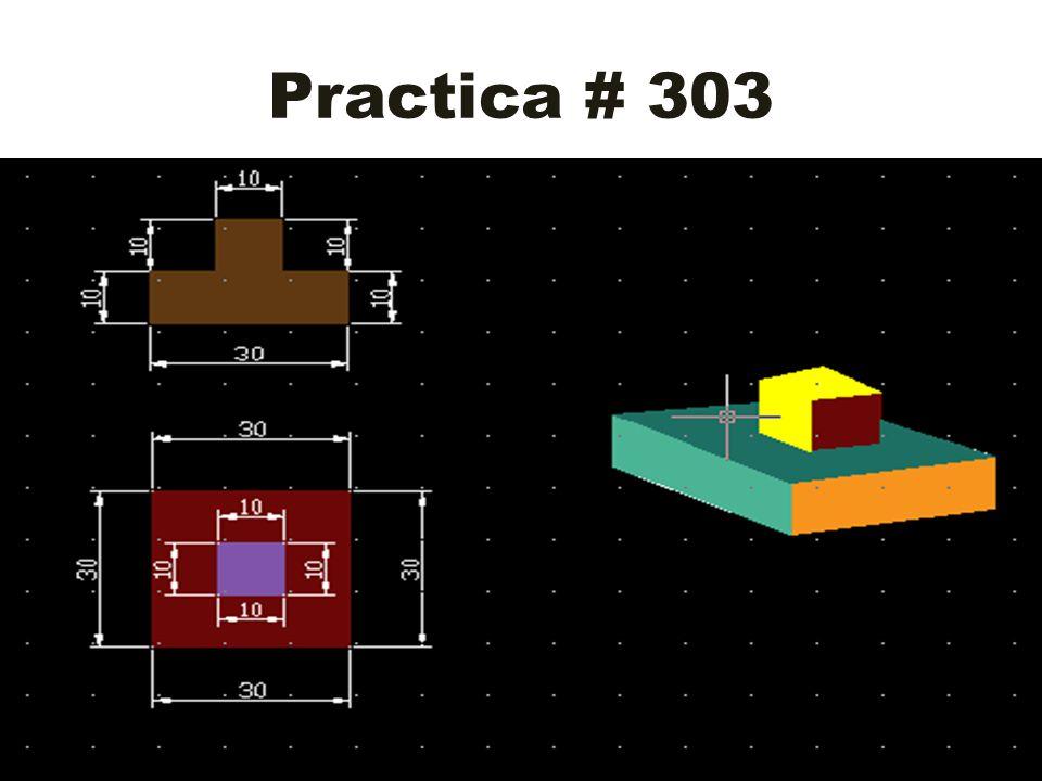 Practica # 303
